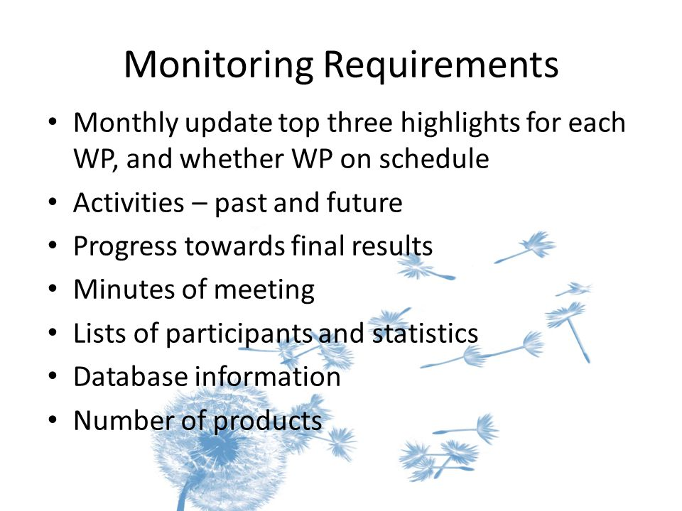 Monitoring Requirements Monthly update top three highlights for each WP, and whether WP on schedule Activities – past and future Progress towards fina