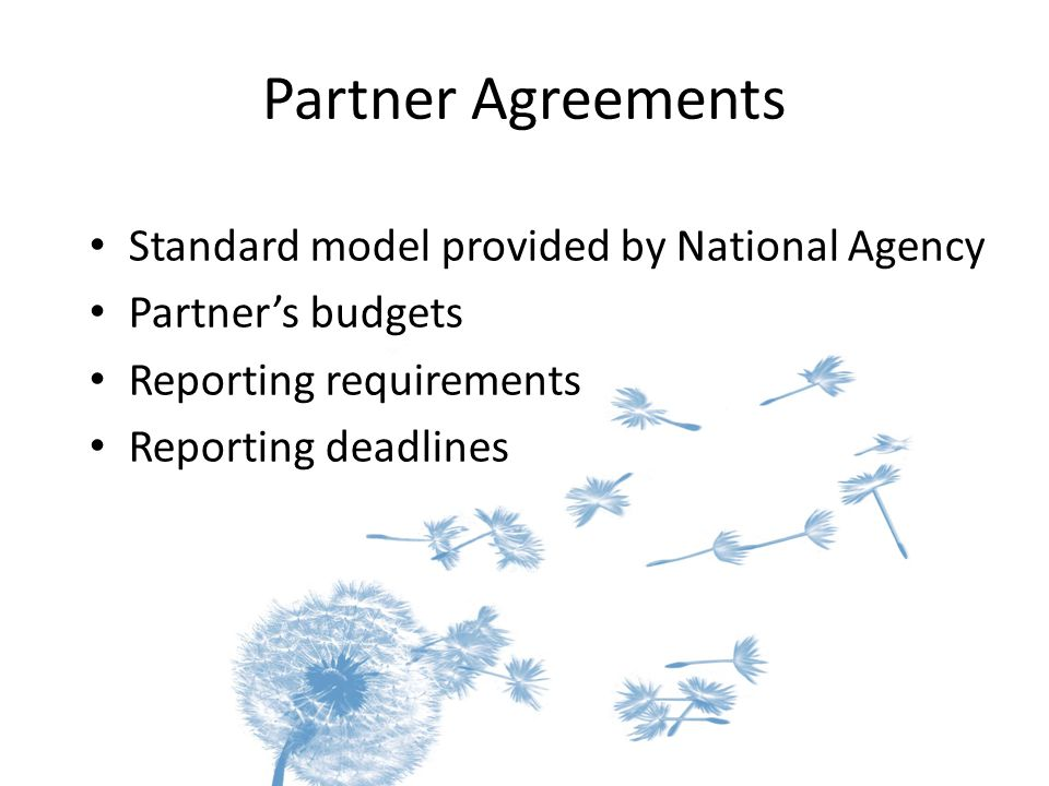 Partner Agreements Standard model provided by National Agency Partner's budgets Reporting requirements Reporting deadlines