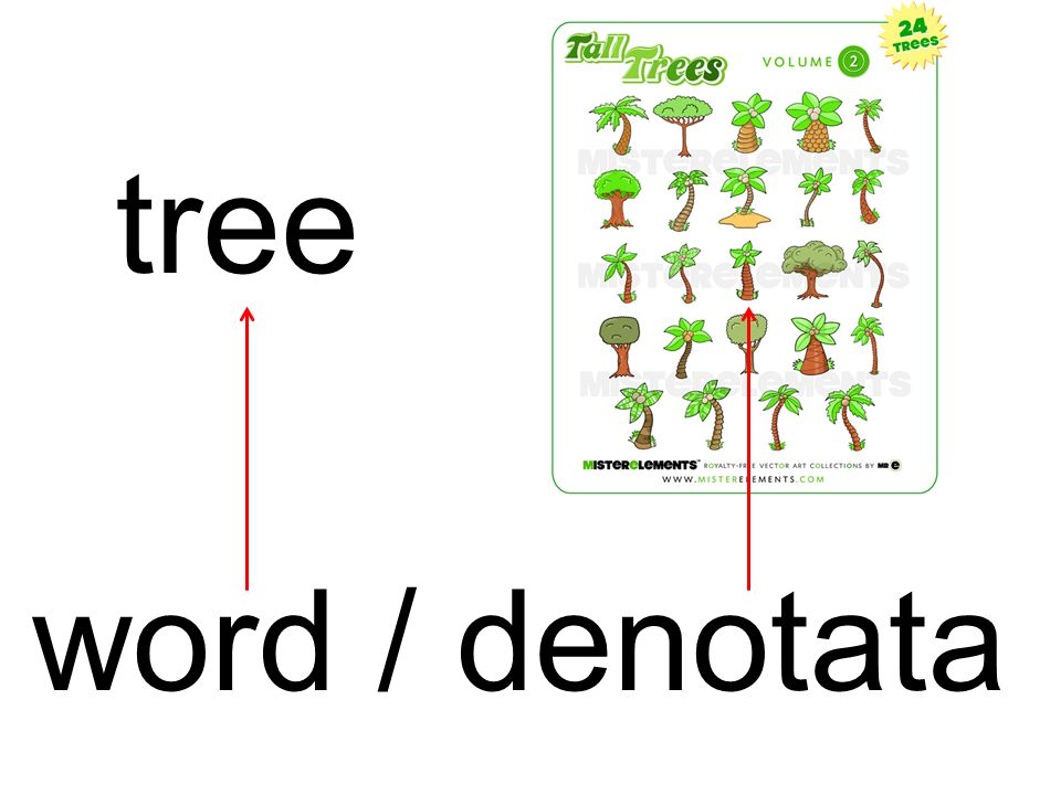tree word / denotata