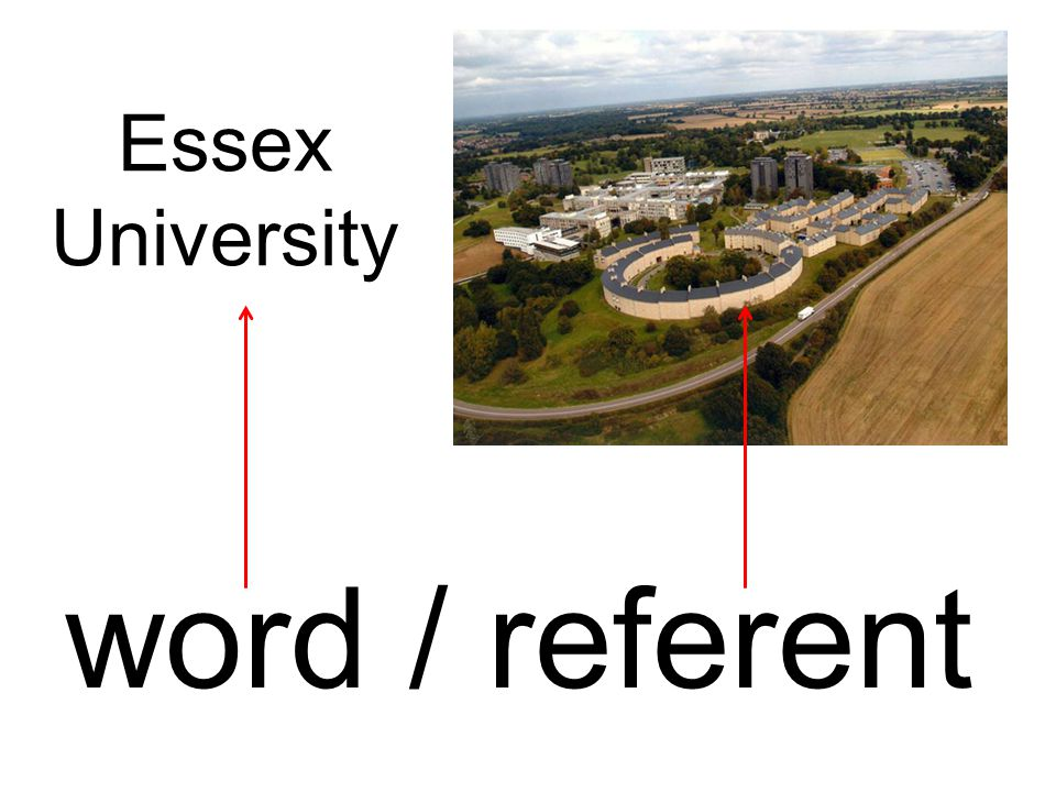 Essex University word / referent