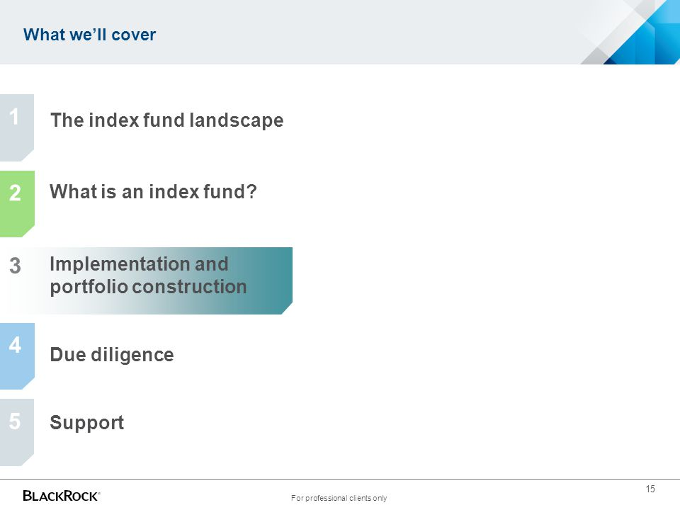 15 What we'll cover For professional clients only The index fund landscape What is an index fund? Implementation and portfolio construction Due dilige