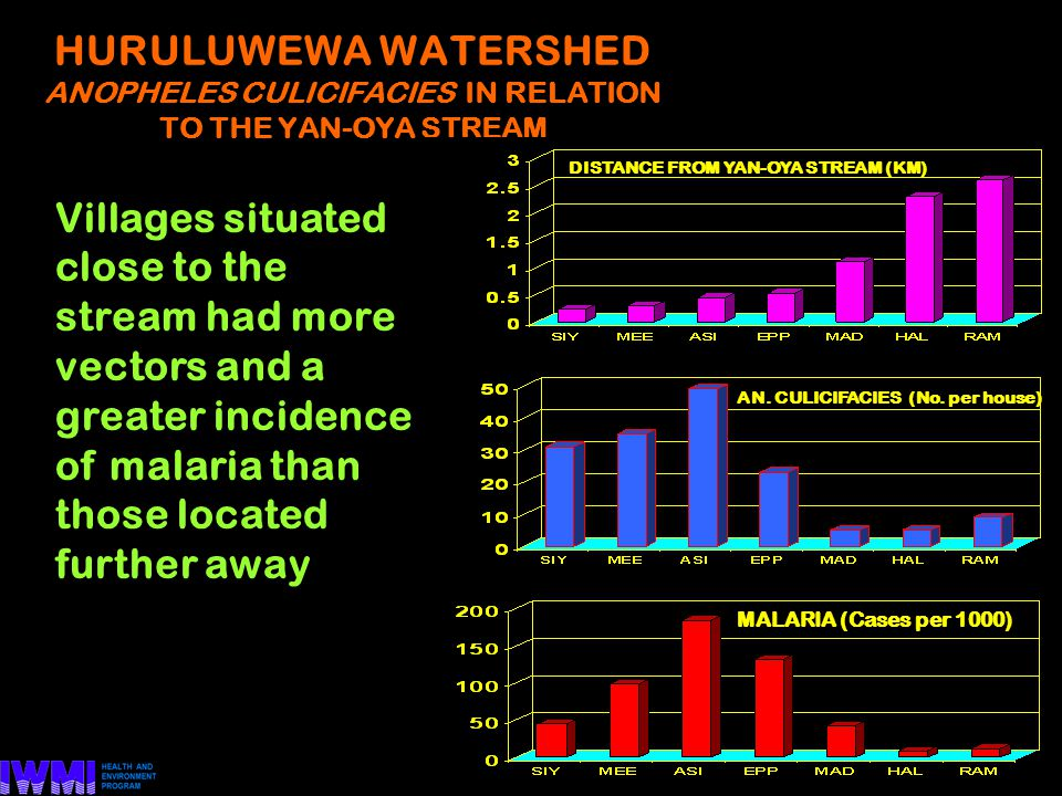 HURULUWEWA WATERSHED ANOPHELES CULICIFACIES IN RELATION TO THE YAN-OYA STREAM AN.