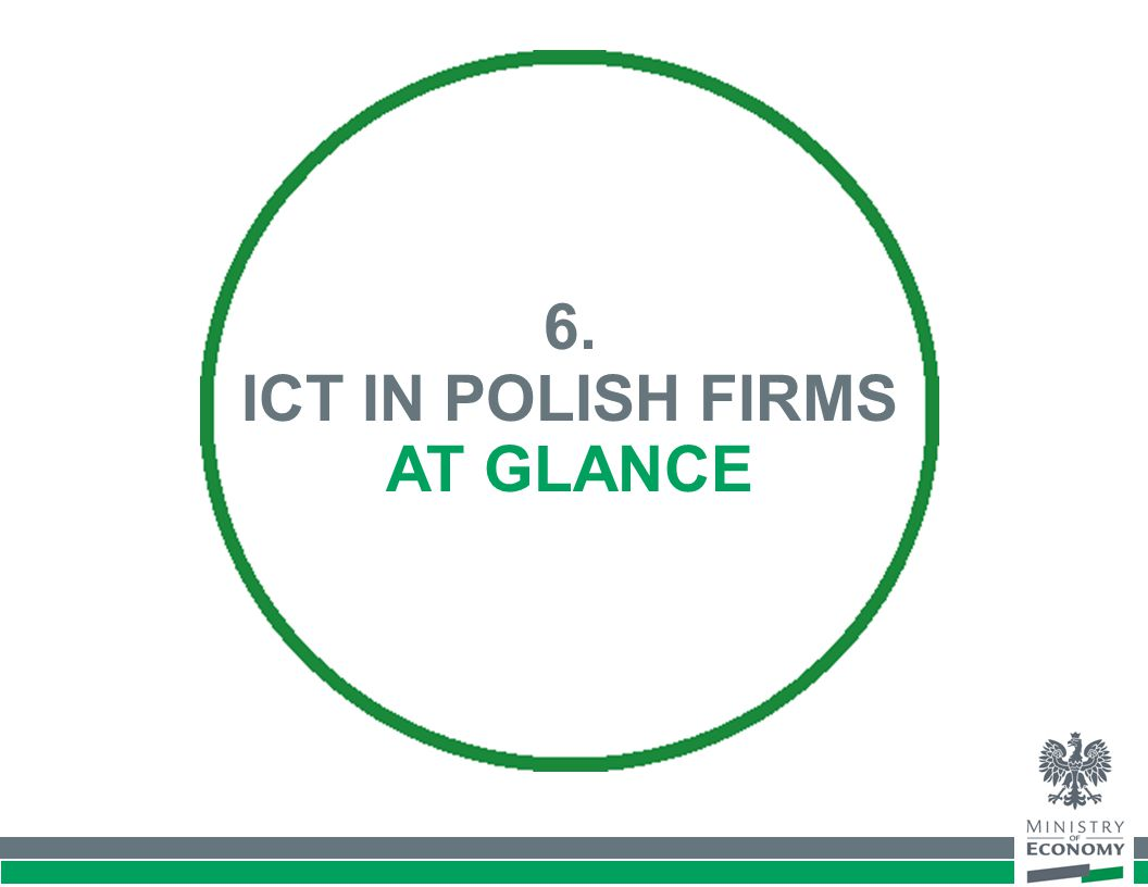 6. ICT IN POLISH FIRMS AT GLANCE