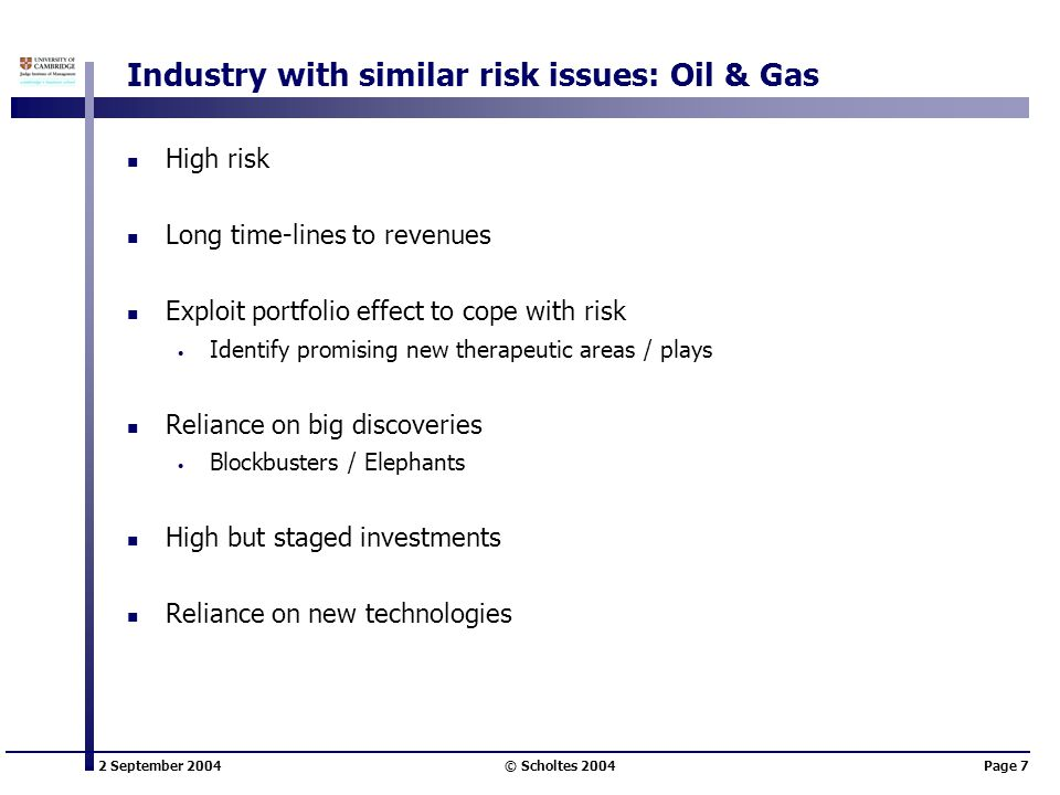 2 September 2004 © Scholtes 2004Page 7 Industry with similar risk issues: Oil & Gas High risk Long time-lines to revenues Exploit portfolio effect to
