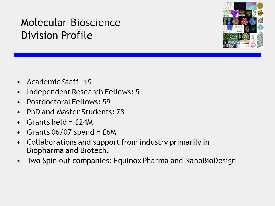 Molecular Bioscience Division Profile Academic Staff: 19 Independent Research Fellows: 5 Postdoctoral Fellows: 59 PhD and Master Students: 78 Grants held = £24M Grants 06/07 spend = £6M Collaborations and support from industry primarily in Biopharma and Biotech.