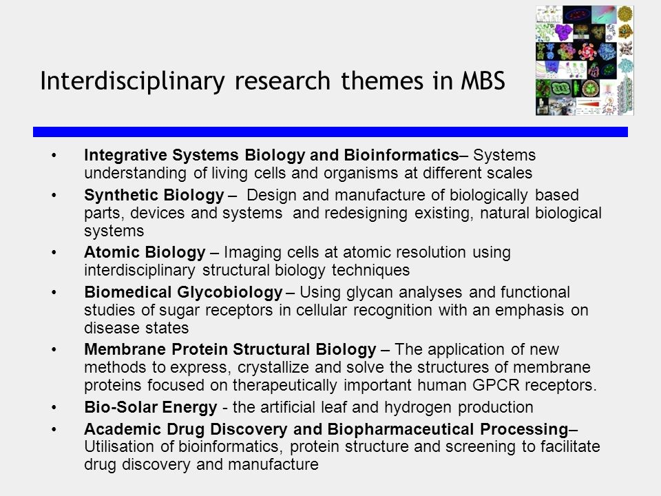 Integrative Systems Biology and Bioinformatics– Systems understanding of living cells and organisms at different scales Synthetic Biology – Design and manufacture of biologically based parts, devices and systems and redesigning existing, natural biological systems Atomic Biology – Imaging cells at atomic resolution using interdisciplinary structural biology techniques Biomedical Glycobiology – Using glycan analyses and functional studies of sugar receptors in cellular recognition with an emphasis on disease states Membrane Protein Structural Biology – The application of new methods to express, crystallize and solve the structures of membrane proteins focused on therapeutically important human GPCR receptors.