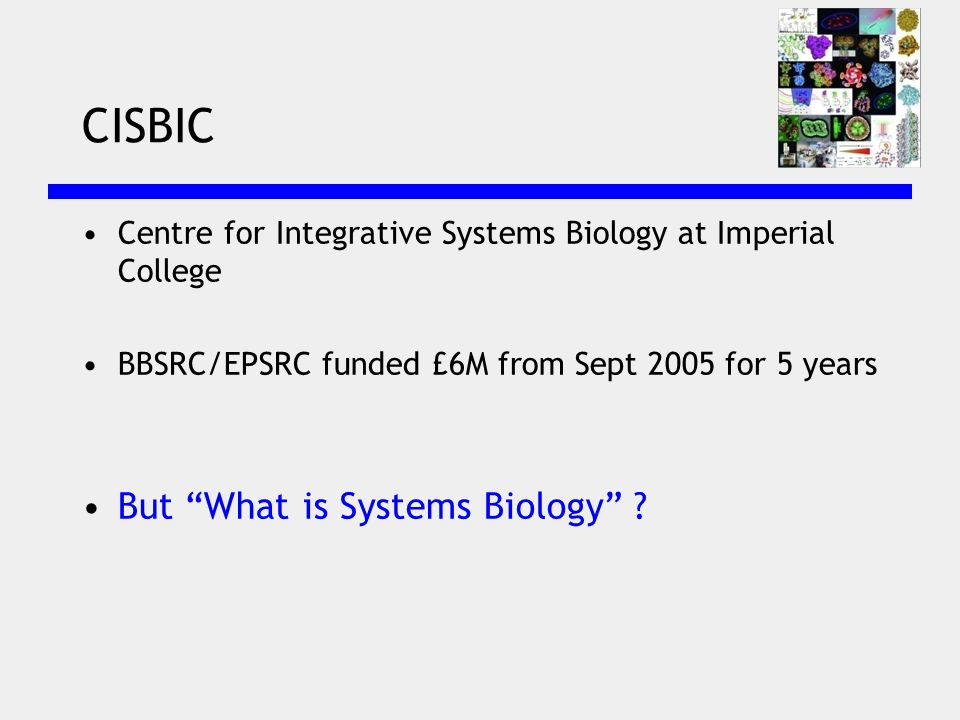 CISBIC Centre for Integrative Systems Biology at Imperial College BBSRC/EPSRC funded £6M from Sept 2005 for 5 years But What is Systems Biology