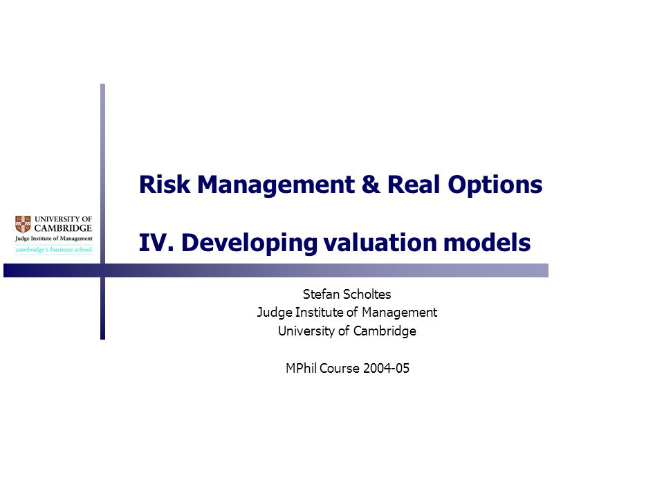 Risk Management & Real Options IV.