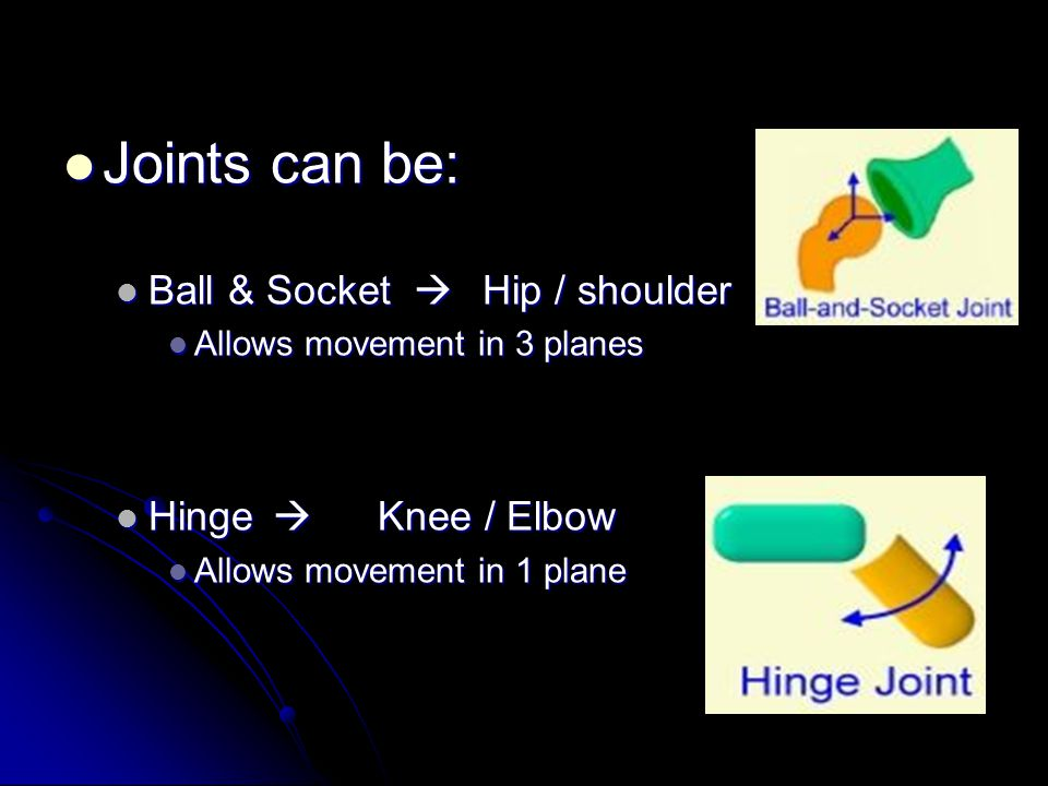 Synovial Joints - Credit Freely movable joints Freely movable joints StructureFunction Ligament Holds BONES together Cartilage Reduces friction & acts as a shock absorber Synovial Membrane Secretes synovial fluid Synovial Fluid Lubricant which reduces friction.