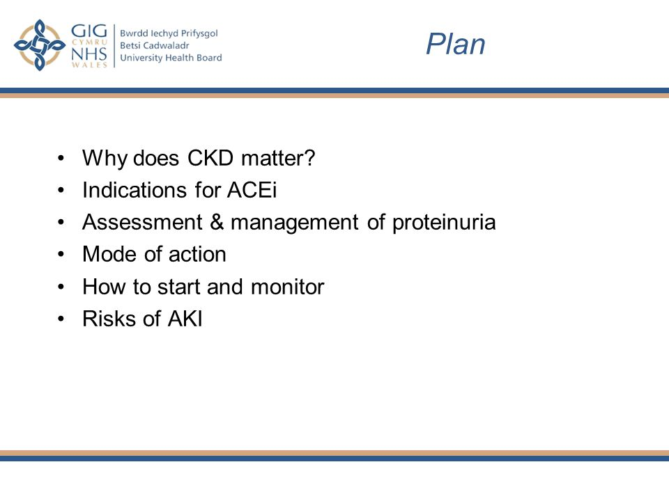 Plan Why does CKD matter.