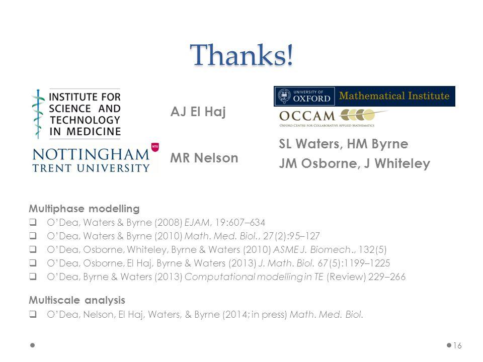 16 Thanks! AJ El Haj SL Waters, HM Byrne JM Osborne, J Whiteley MR Nelson Multiphase modelling  O'Dea, Waters & Byrne (2008) EJAM, 19:607–634  O'Dea