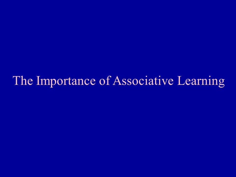 The Importance of Associative Learning