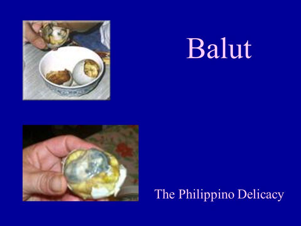 Balut The Philippino Delicacy