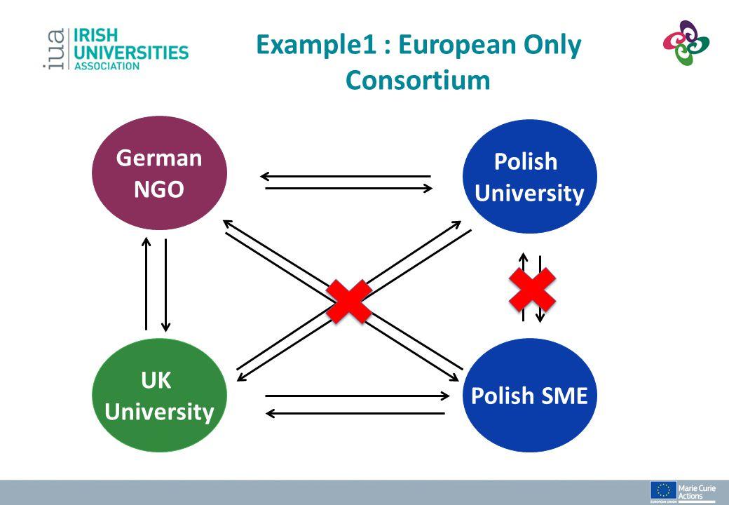 Example1 : European Only Consortium Polish SME UK University German NGO Polish University