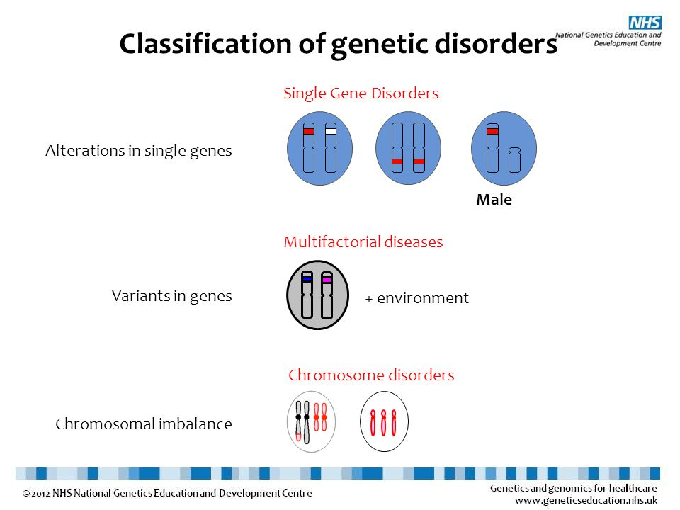 Multifactorial Examples include some cases of cleft lip and palate; neural tube defects; diabetes and hypertension Caused by a combination of genetic predisposition and environmental influences Pattern – more affected people in family than expected from incidence in population but doesn't fit dominant, recessive or X-linked inheritance patterns