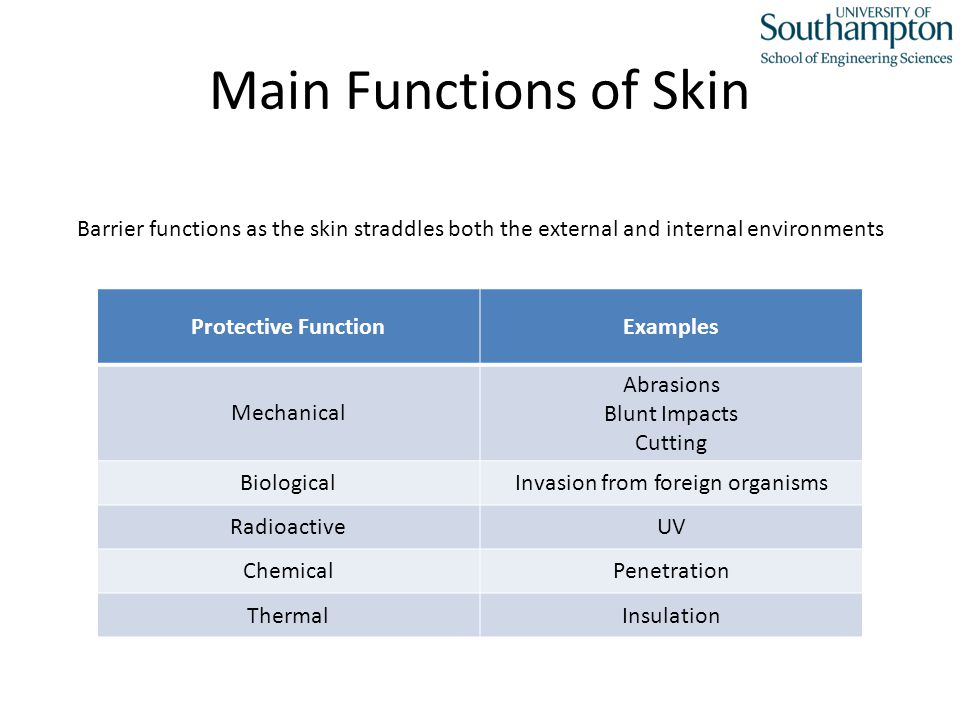 Main Functions Cont.What happens when the skin is broken.