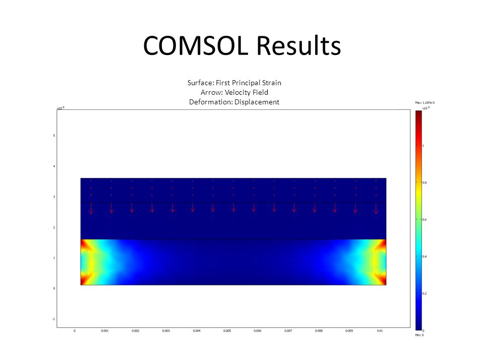 COMSOL Results Surface: First Principal Strain Arrow: Velocity Field Deformation: Displacement