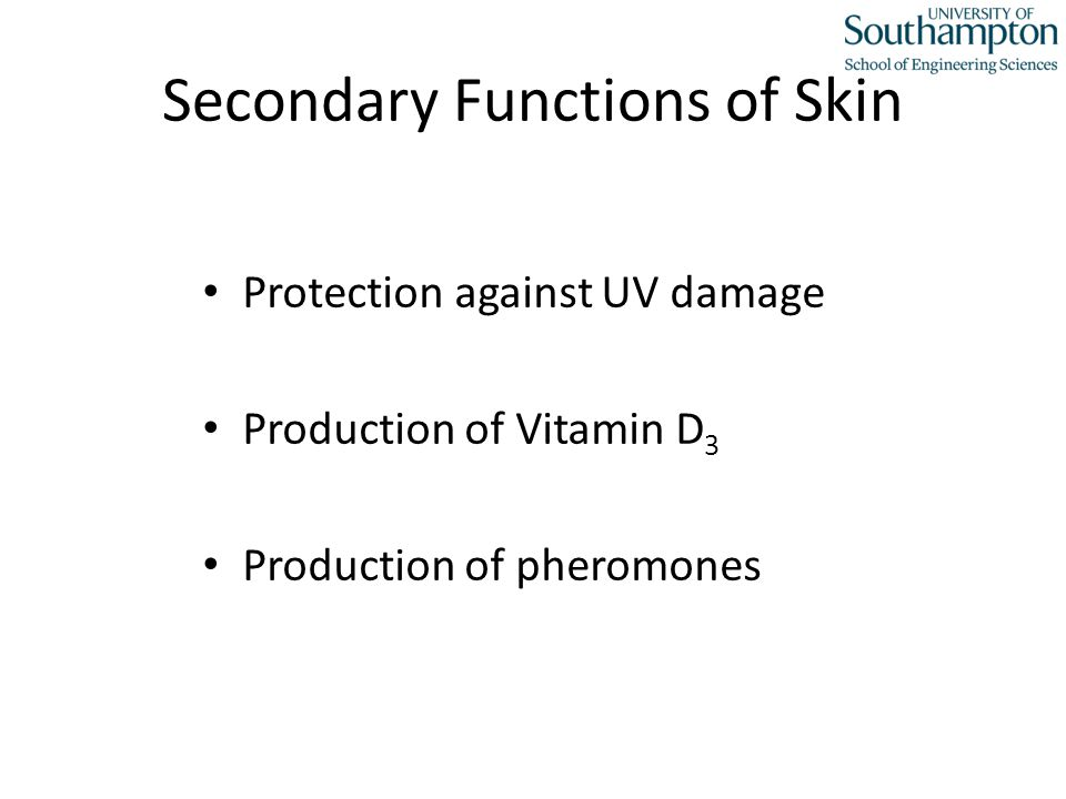Secondary Functions of Skin Protection against UV damage Production of Vitamin D 3 Production of pheromones