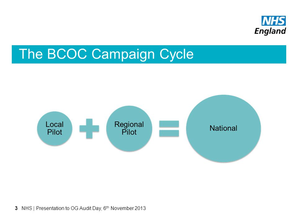 The BCOC Campaign Cycle 3NHS | Presentation to OG Audit Day, 6 th November 2013