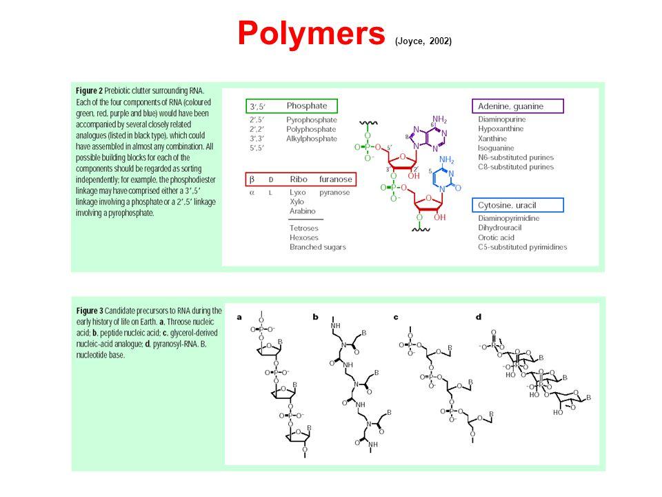 Polymers (Joyce, 2002)