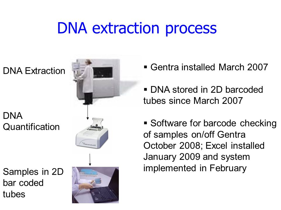 DNA extraction process DNA Extraction DNA Quantification Samples in 2D bar coded tubes  Gentra installed March 2007  DNA stored in 2D barcoded tubes since March 2007  Software for barcode checking of samples on/off Gentra October 2008; Excel installed January 2009 and system implemented in February