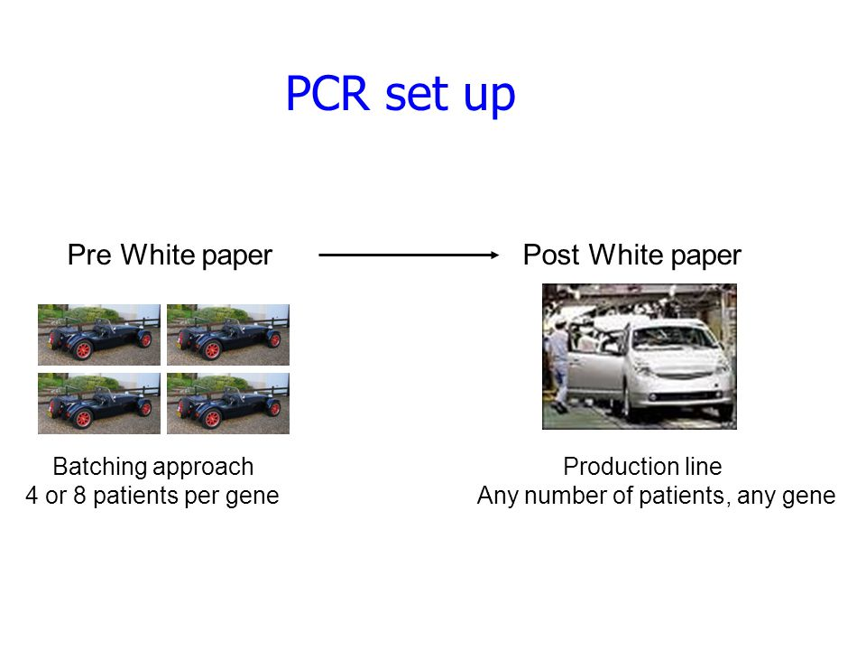 PCR set up Pre White paper Post White paper Batching approach Production line 4 or 8 patients per gene Any number of patients, any gene