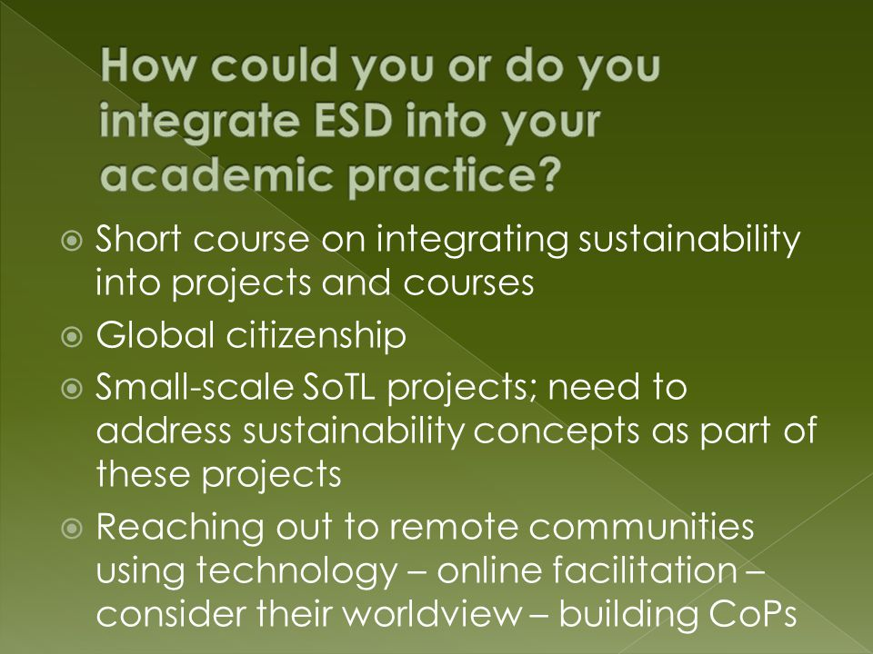  Short course on integrating sustainability into projects and courses  Global citizenship  Small-scale SoTL projects; need to address sustainability concepts as part of these projects  Reaching out to remote communities using technology – online facilitation – consider their worldview – building CoPs