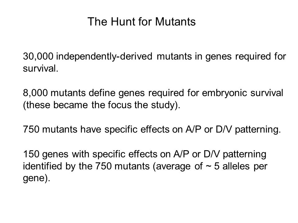The Hunt for Mutants 30,000 independently-derived mutants in genes required for survival.