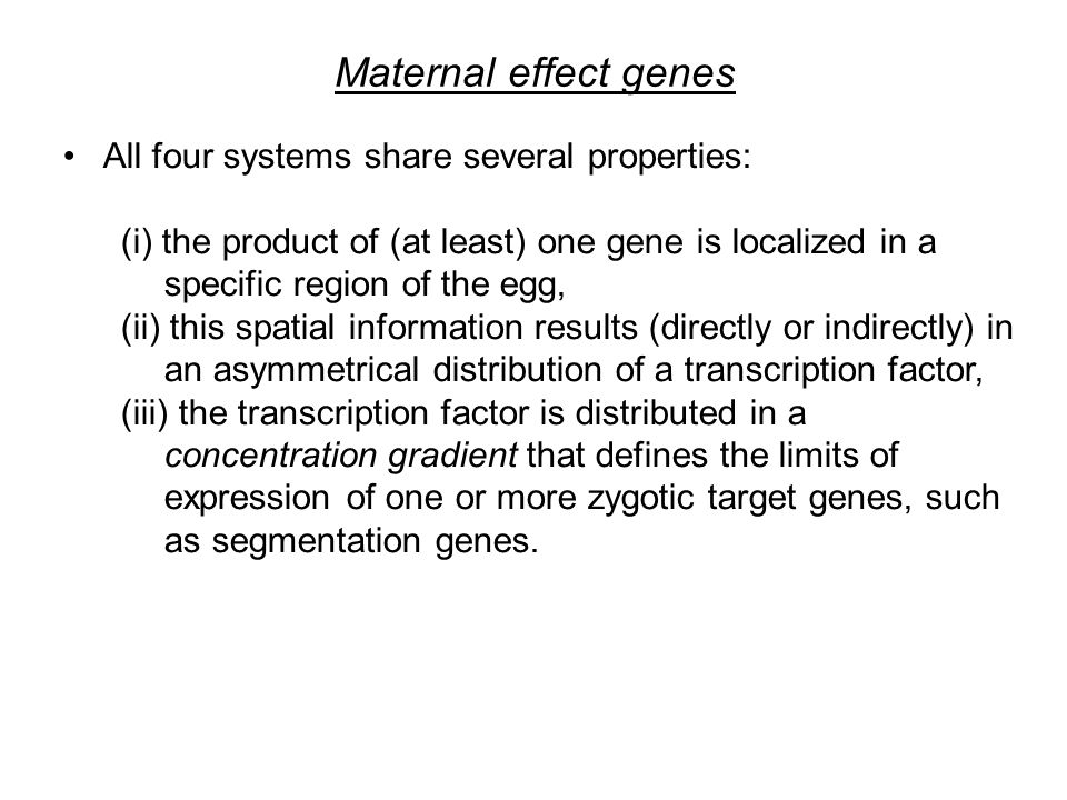 Maternal effect genes All four systems share several properties: (i) the product of (at least) one gene is localized in a specific region of the egg, (ii) this spatial information results (directly or indirectly) in an asymmetrical distribution of a transcription factor, (iii) the transcription factor is distributed in a concentration gradient that defines the limits of expression of one or more zygotic target genes, such as segmentation genes.