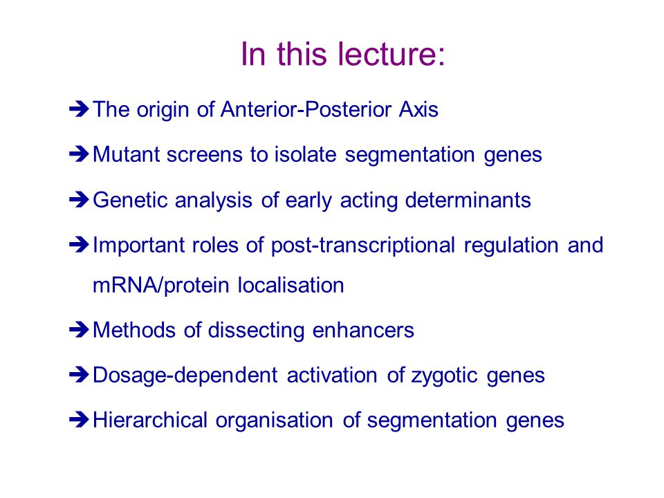 èThe origin of Anterior-Posterior Axis èMutant screens to isolate segmentation genes èGenetic analysis of early acting determinants èImportant roles of post-transcriptional regulation and mRNA/protein localisation èMethods of dissecting enhancers èDosage-dependent activation of zygotic genes èHierarchical organisation of segmentation genes In this lecture: