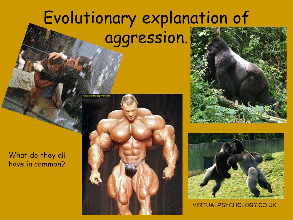 Evaluation of murder explanation.