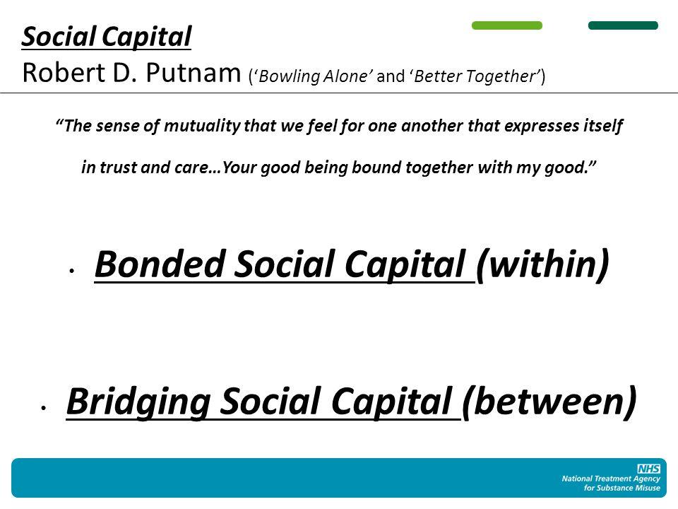 Social Capital Robert D.