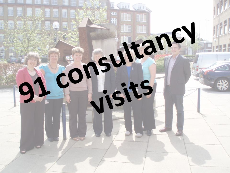 91 consultancy visits