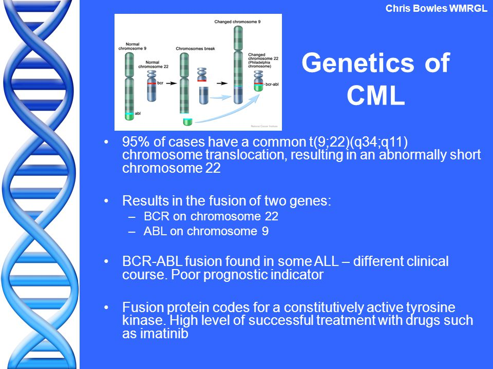 Genetics of CML 95% of cases have a common t(9;22)(q34;q11) chromosome translocation, resulting in an abnormally short chromosome 22 Results in the fu