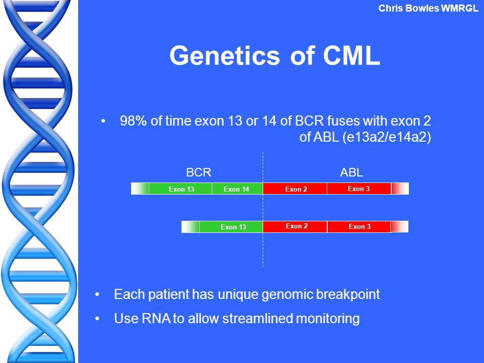 Genetics of CML 98% of time exon 13 or 14 of BCR fuses with exon 2 of ABL (e13a2/e14a2) Chris Bowles WMRGL Exon 13 Exon 14 Exon 2 Exon 3 Exon 2 Exon 3 BCRABL Each patient has unique genomic breakpoint Use RNA to allow streamlined monitoring