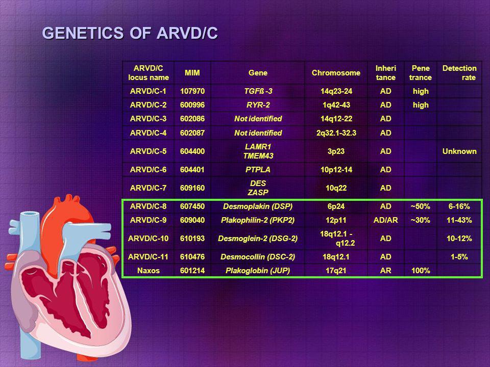 GENETICS OF ARVD/C ARVD/C locus name MIMGeneChromosome Inheri tance Pene trance Detection rate ARVD/C-1107970TGFß -314q23-24ADhigh ARVD/C-2600996RYR-2