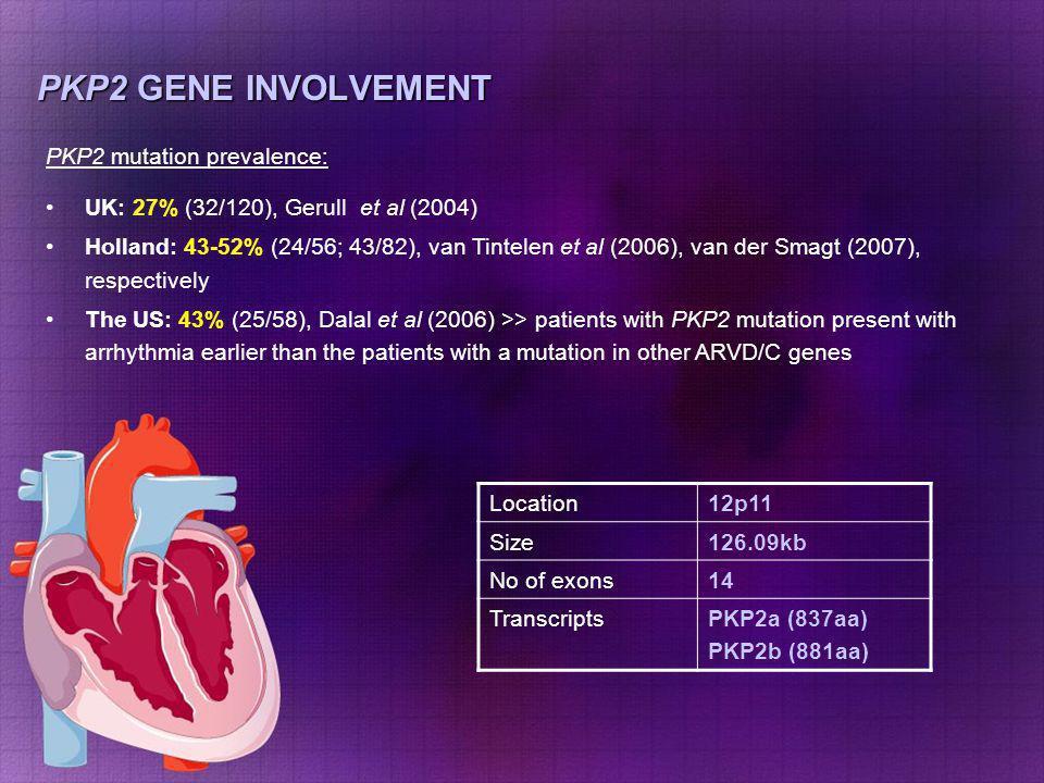 PKP2 GENE INVOLVEMENT Location12p11 Size126.09kb No of exons14 TranscriptsPKP2a (837aa) PKP2b (881aa) PKP2 mutation prevalence: UK: 27% (32/120), Geru