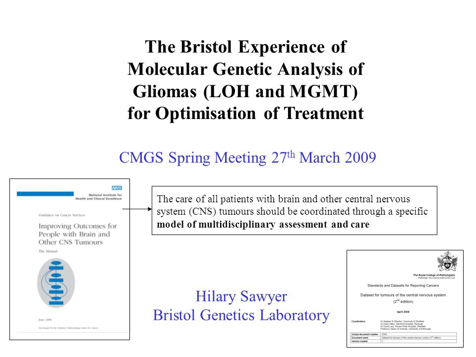 The Bristol Experience of Molecular Genetic Analysis of Gliomas (LOH and MGMT) for Optimisation of Treatment Hilary Sawyer Bristol Genetics Laboratory
