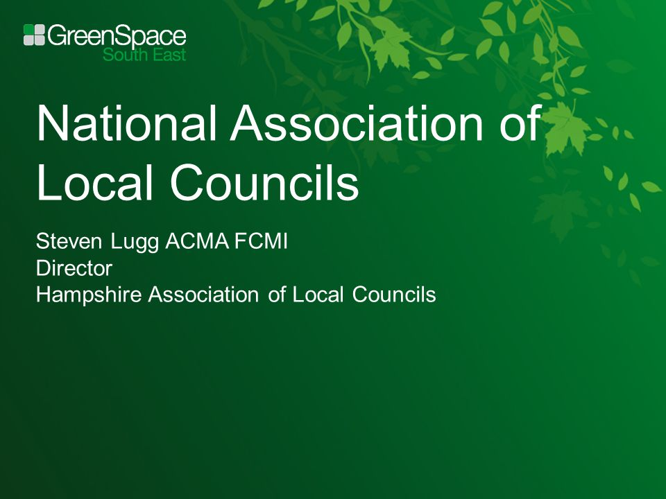 National Association of Local Councils Steven Lugg ACMA FCMI Director Hampshire Association of Local Councils
