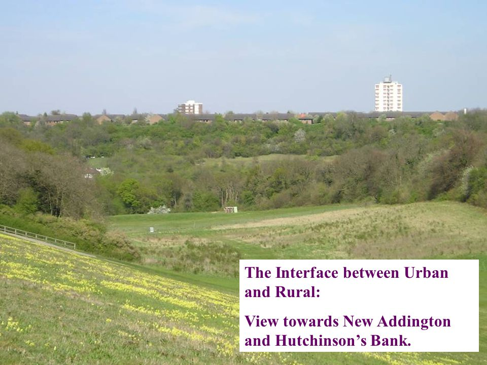 The Interface between Urban and Rural: View towards New Addington and Hutchinson's Bank.