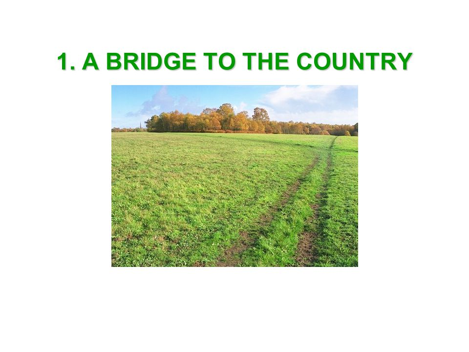 1. A BRIDGE TO THE COUNTRY