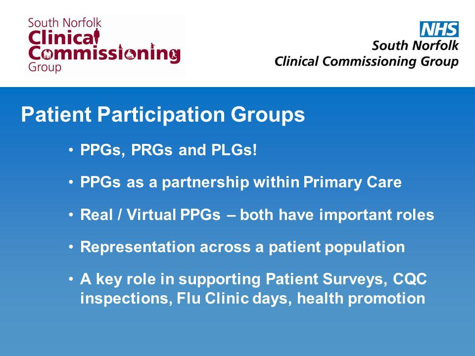 Patient Participation Groups PPGs, PRGs and PLGs.