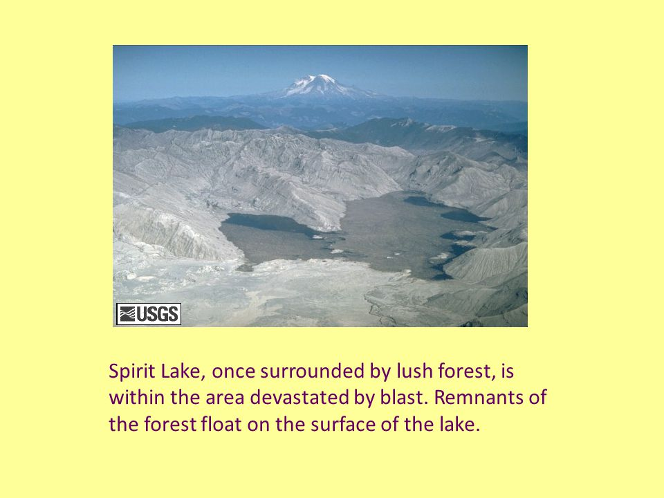 Spirit Lake, once surrounded by lush forest, is within the area devastated by blast.