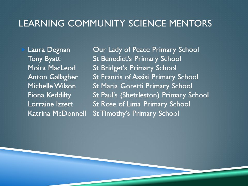 LEARNING COMMUNITY SCIENCE MENTORS  Laura DegnanOur Lady of Peace Primary School Tony ByattSt Benedict s Primary School Moira MacLeodSt Bridget s Primary School Anton GallagherSt Francis of Assisi Primary School Michelle WilsonSt Maria Goretti Primary School Fiona KeddiltySt Paul s (Shettleston) Primary School Lorraine IzzettSt Rose of Lima Primary School Katrina McDonnellSt Timothy s Primary School