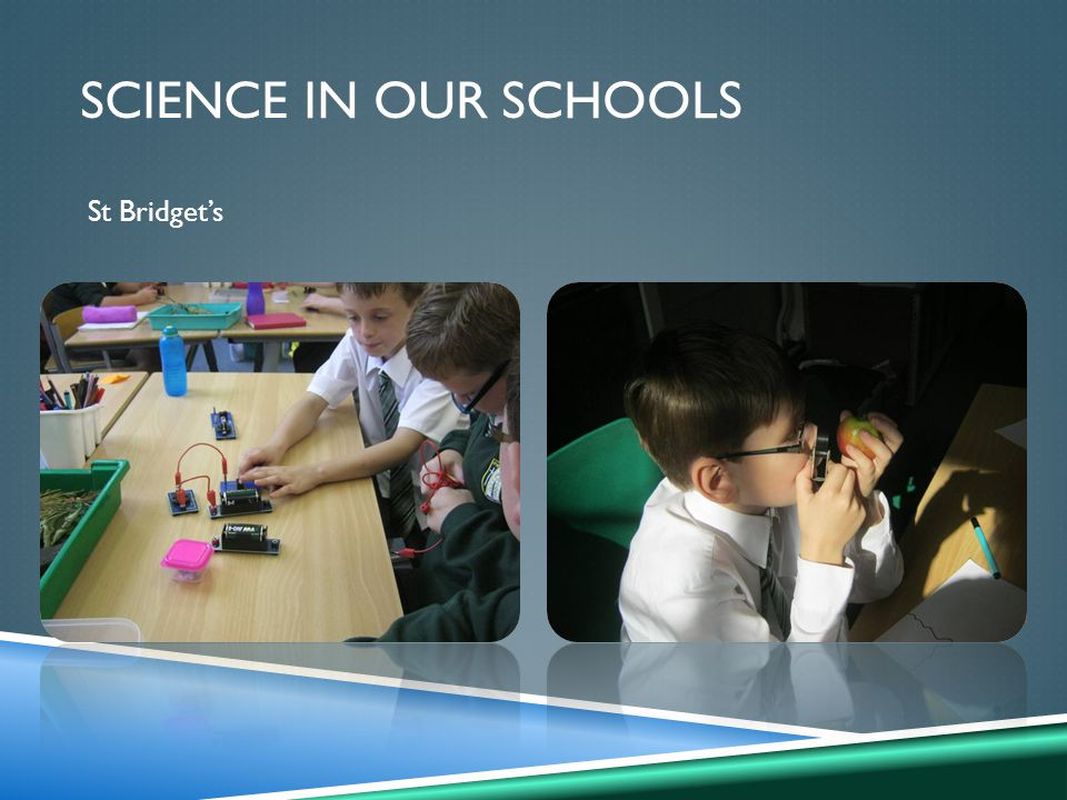 SCIENCE IN OUR SCHOOLS St Bridget's
