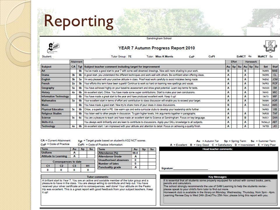 Reporting Insert picture of report and answer any queries about the actual report at this point.