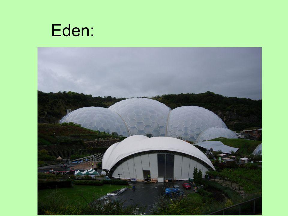 Eden: