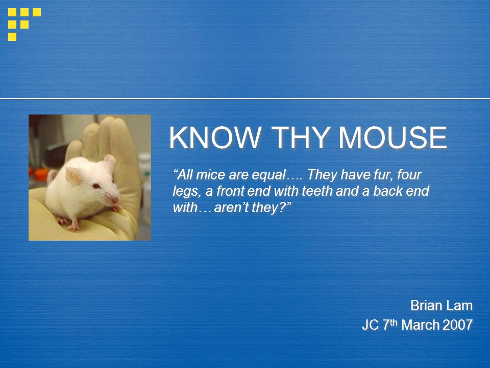 KNOW THY MOUSE All mice are equal….