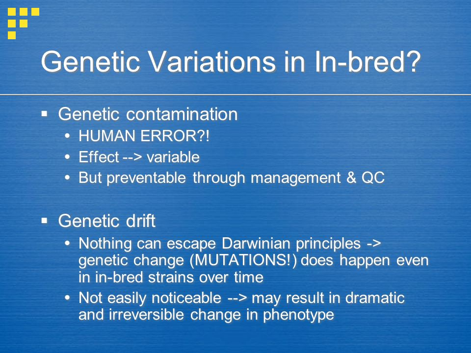 Genetic Variations in In-bred.  Genetic contamination  HUMAN ERROR .