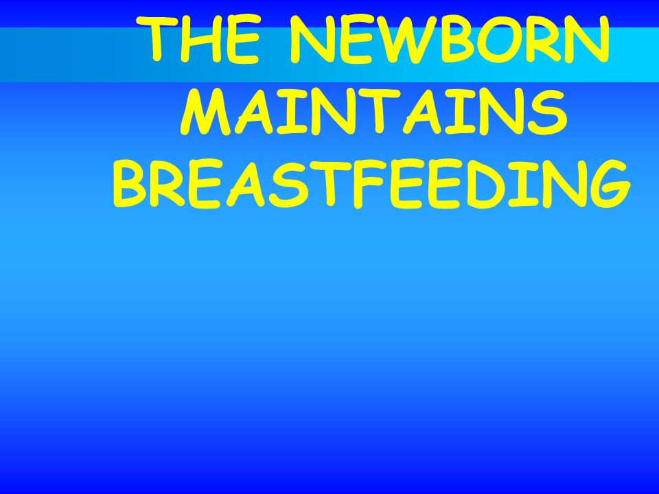 THE NEWBORN MAINTAINS BREASTFEEDING